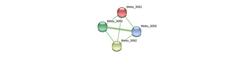 Mettu_3061 protein (Methylobacter tundripaludum) - STRING interaction network