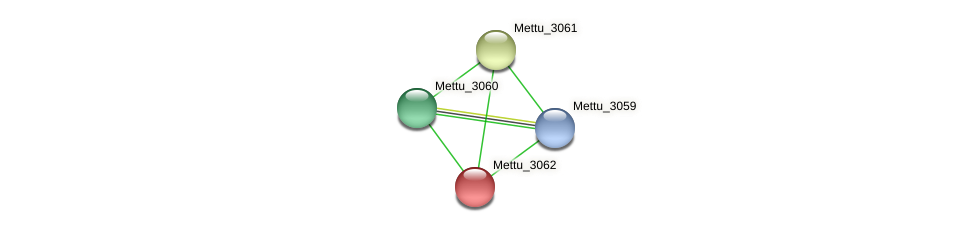 Mettu_3062 protein (Methylobacter tundripaludum) - STRING interaction network