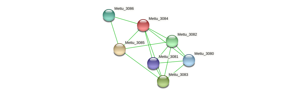 Mettu_3084 protein (Methylobacter tundripaludum) - STRING interaction network