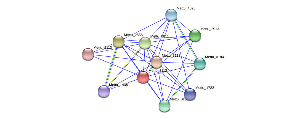 Mettu_3112 protein (Methylobacter tundripaludum) - STRING interaction network