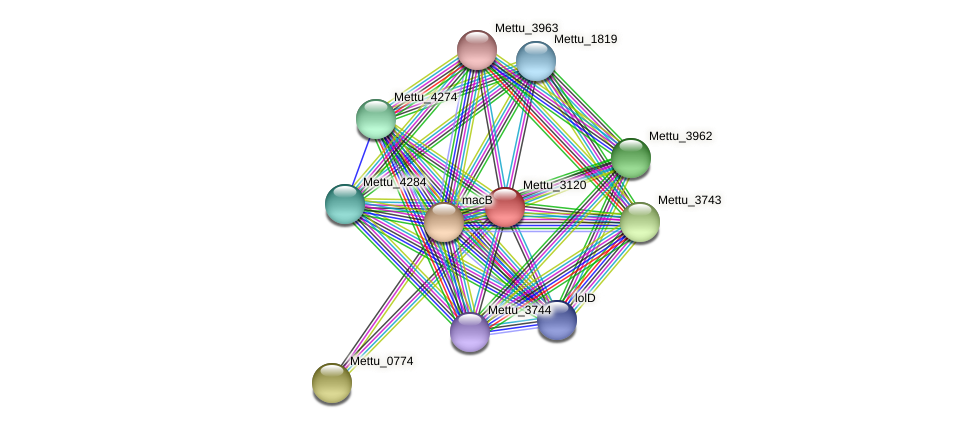 Mettu_3120 protein (Methylobacter tundripaludum) - STRING interaction network