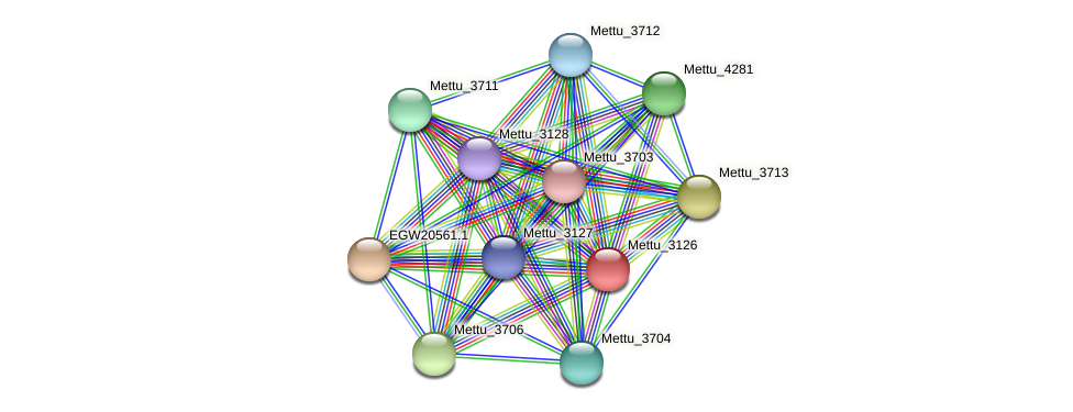 Mettu_3126 protein (Methylobacter tundripaludum) - STRING interaction network
