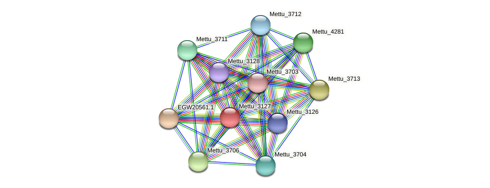 Mettu_3127 protein (Methylobacter tundripaludum) - STRING interaction network