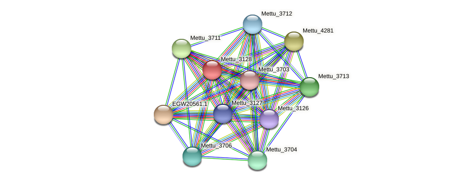 Mettu_3128 protein (Methylobacter tundripaludum) - STRING interaction network