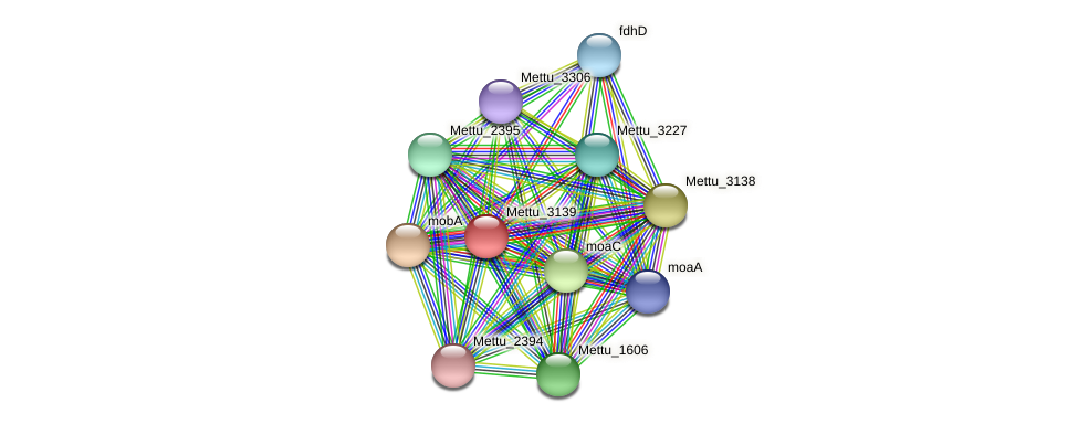 Mettu_3139 protein (Methylobacter tundripaludum) - STRING interaction network