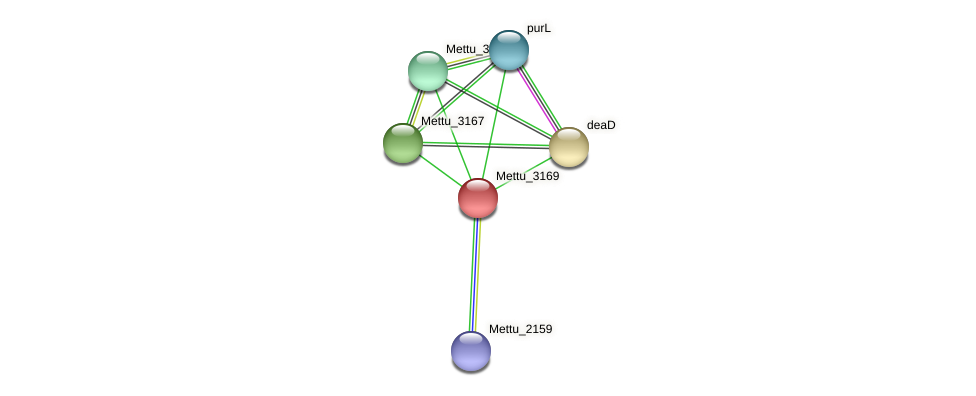 Mettu_3169 protein (Methylobacter tundripaludum) - STRING interaction network