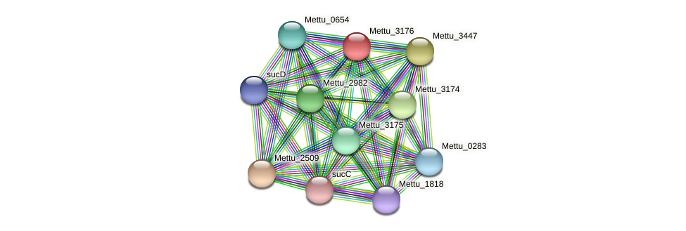 Mettu_3176 protein (Methylobacter tundripaludum) - STRING interaction network