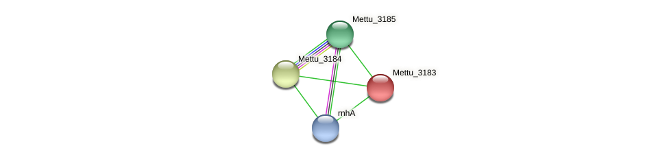 Mettu_3183 protein (Methylobacter tundripaludum) - STRING interaction network