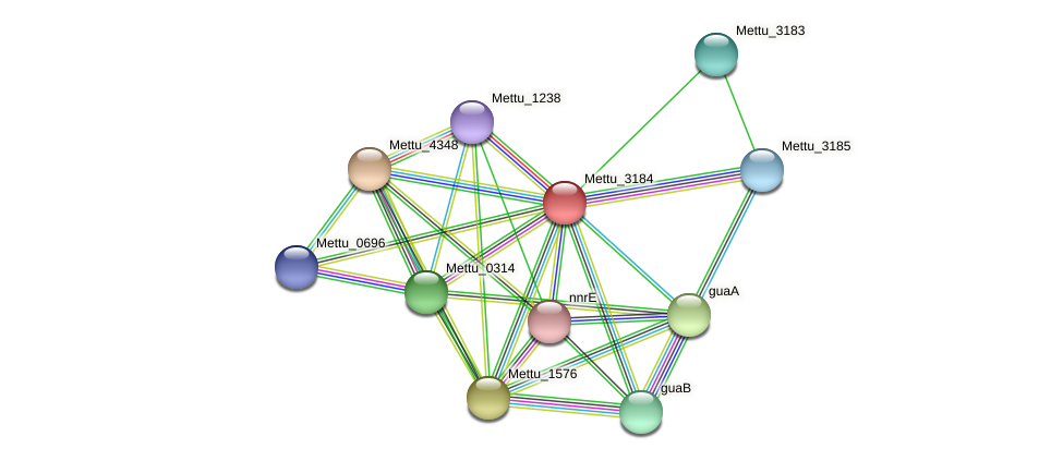 Mettu_3184 protein (Methylobacter tundripaludum) - STRING interaction network