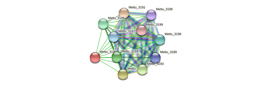 Mettu_3190 protein (Methylobacter tundripaludum) - STRING interaction network