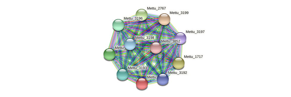 Mettu_3191 protein (Methylobacter tundripaludum) - STRING interaction network