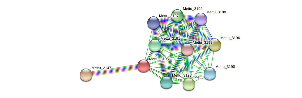 Mettu_3195 protein (Methylobacter tundripaludum) - STRING interaction network