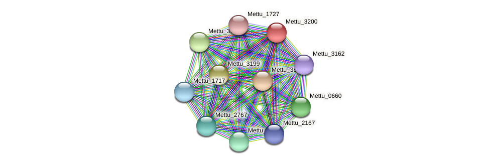 Mettu_3200 protein (Methylobacter tundripaludum) - STRING interaction network