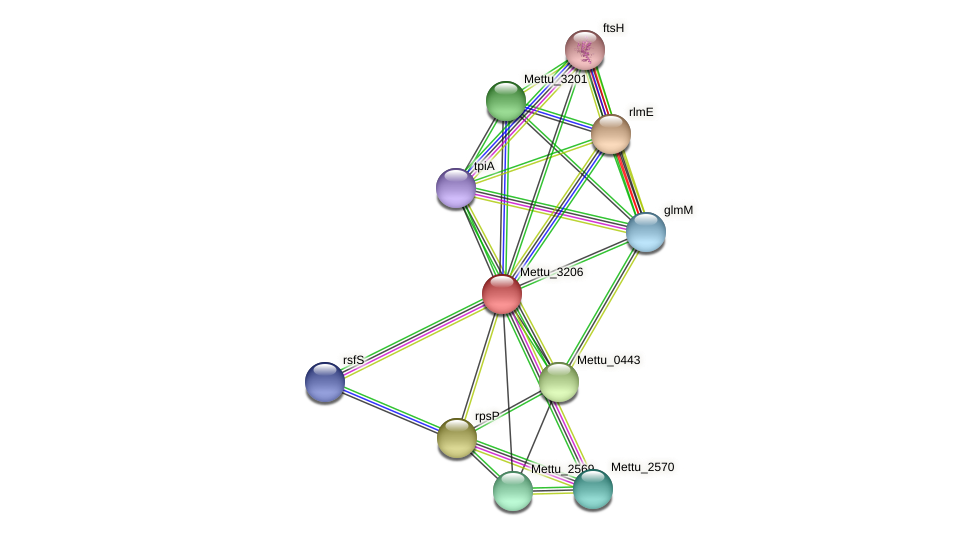 Mettu_3206 protein (Methylobacter tundripaludum) - STRING interaction network