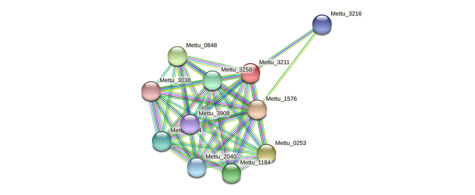 Mettu_3211 protein (Methylobacter tundripaludum) - STRING interaction network