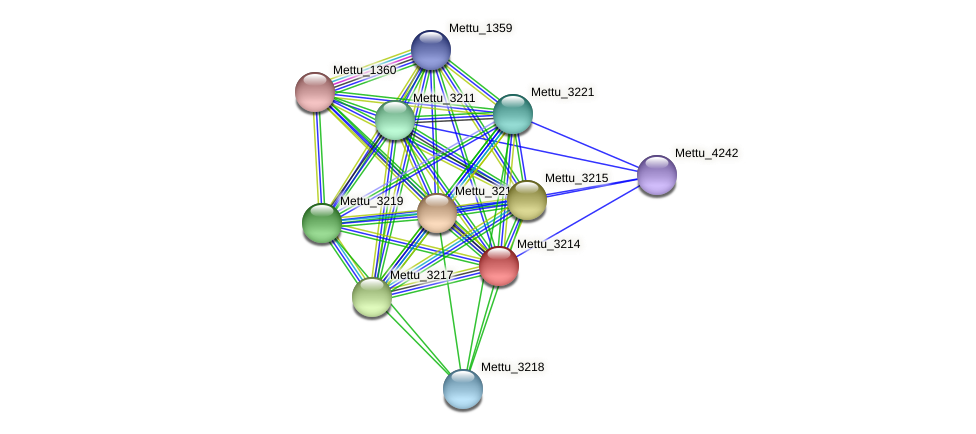 Mettu_3214 protein (Methylobacter tundripaludum) - STRING interaction network