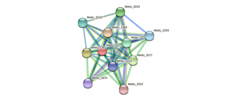 Mettu_3221 protein (Methylobacter tundripaludum) - STRING interaction network