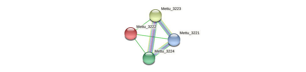 Mettu_3222 protein (Methylobacter tundripaludum) - STRING interaction network