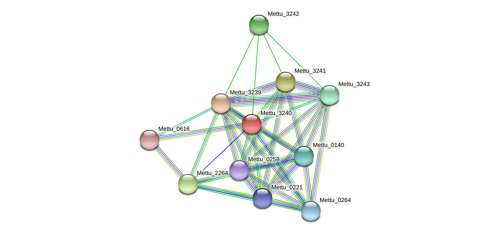 Mettu_3240 protein (Methylobacter tundripaludum) - STRING interaction network