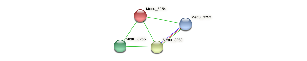 Mettu_3254 protein (Methylobacter tundripaludum) - STRING interaction network