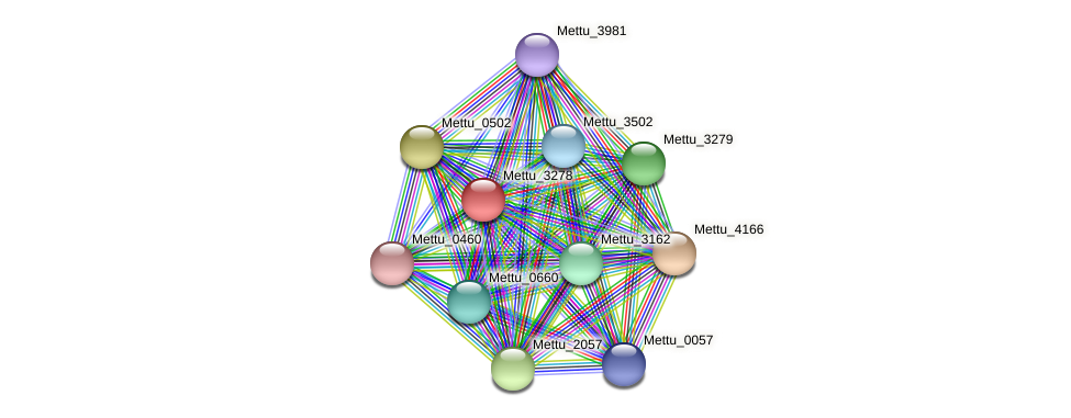 Mettu_3278 protein (Methylobacter tundripaludum) - STRING interaction network