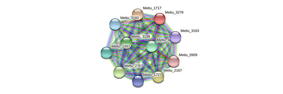 Mettu_3279 protein (Methylobacter tundripaludum) - STRING interaction network