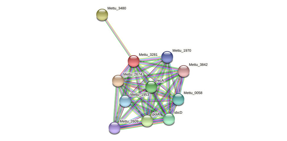 Mettu_3281 protein (Methylobacter tundripaludum) - STRING interaction network
