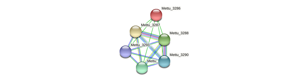 Mettu_3286 protein (Methylobacter tundripaludum) - STRING interaction network