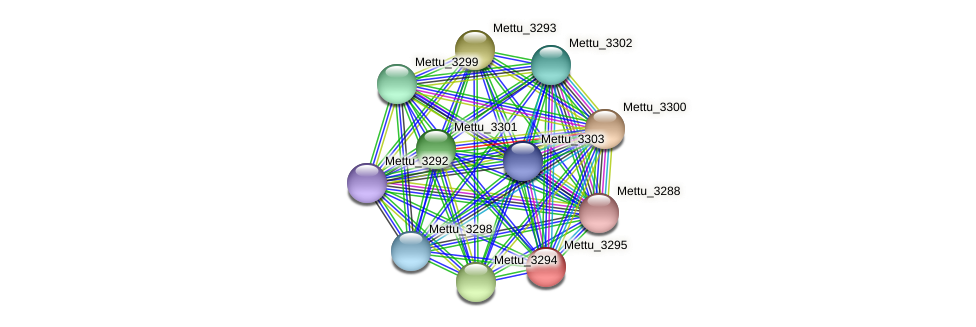 Mettu_3295 protein (Methylobacter tundripaludum) - STRING interaction network
