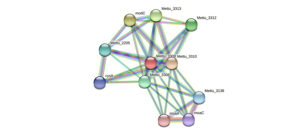 Mettu_3309 protein (Methylobacter tundripaludum) - STRING interaction network