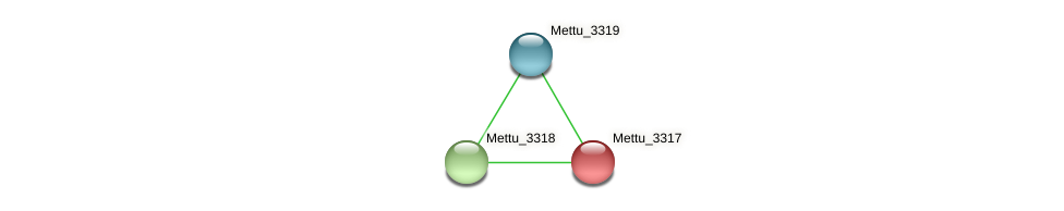 Mettu_3317 protein (Methylobacter tundripaludum) - STRING interaction network