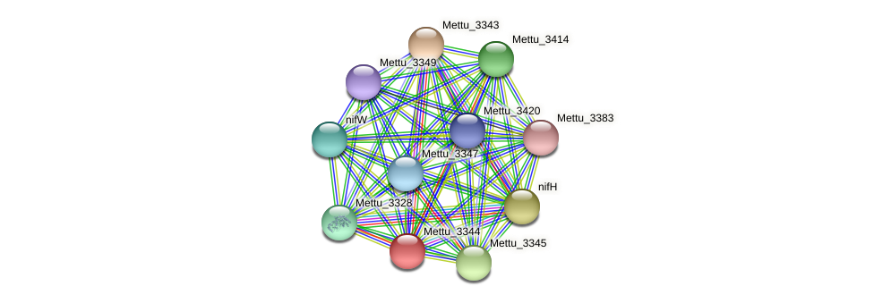Mettu_3344 protein (Methylobacter tundripaludum) - STRING interaction network