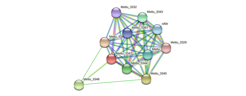 Mettu_3347 protein (Methylobacter tundripaludum) - STRING interaction network
