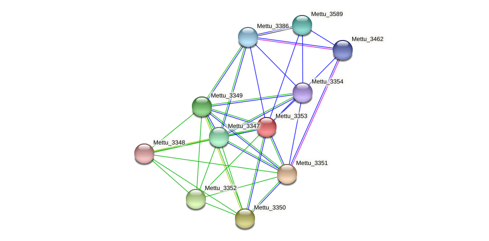 Mettu_3353 protein (Methylobacter tundripaludum) - STRING interaction network
