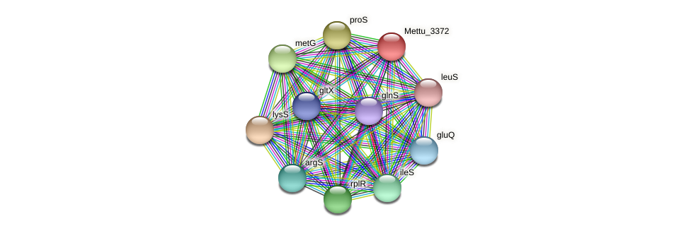 Mettu_3372 protein (Methylobacter tundripaludum) - STRING interaction network