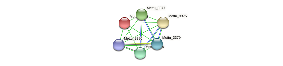 Mettu_3376 protein (Methylobacter tundripaludum) - STRING interaction network