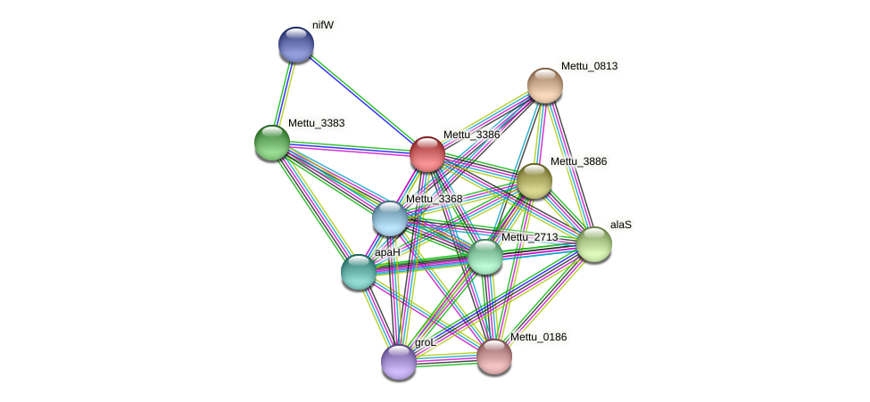 Mettu_3386 protein (Methylobacter tundripaludum) - STRING interaction network