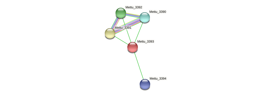 Mettu_3393 protein (Methylobacter tundripaludum) - STRING interaction network