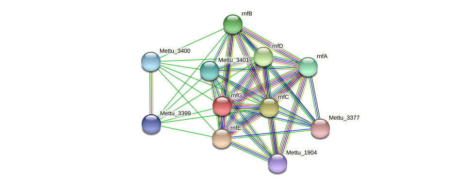 Mettu_3403 protein (Methylobacter tundripaludum) - STRING interaction network