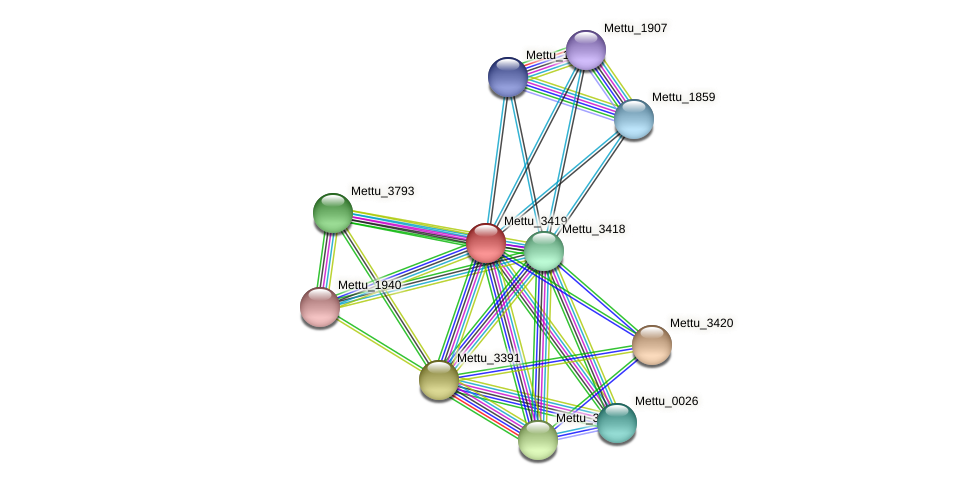 Mettu_3419 protein (Methylobacter tundripaludum) - STRING interaction network