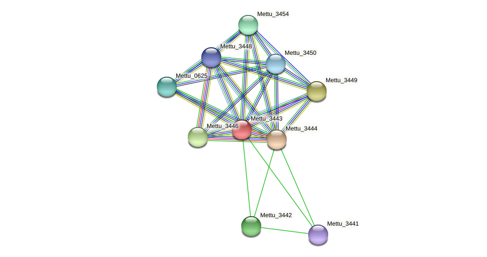 Mettu_3443 protein (Methylobacter tundripaludum) - STRING interaction network