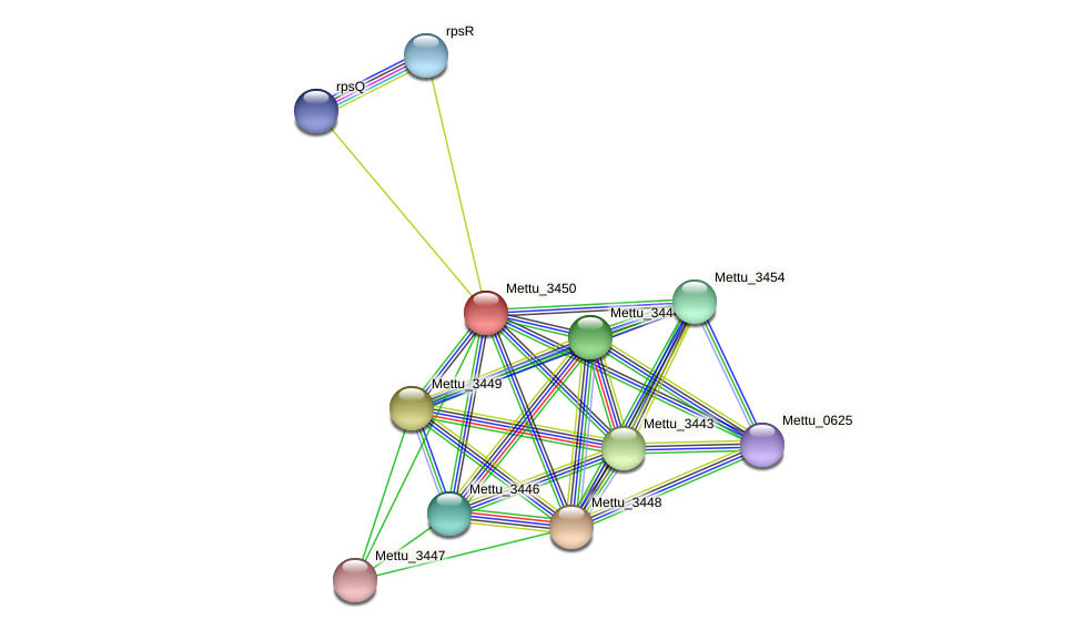 Mettu_3450 protein (Methylobacter tundripaludum) - STRING interaction network