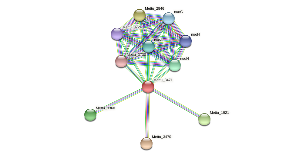 Mettu_3471 protein (Methylobacter tundripaludum) - STRING interaction network
