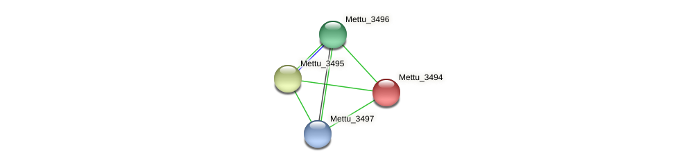 Mettu_3494 protein (Methylobacter tundripaludum) - STRING interaction network