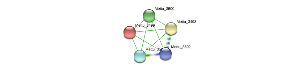 Mettu_3499 protein (Methylobacter tundripaludum) - STRING interaction network