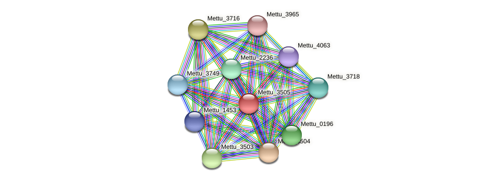Mettu_3505 protein (Methylobacter tundripaludum) - STRING interaction network
