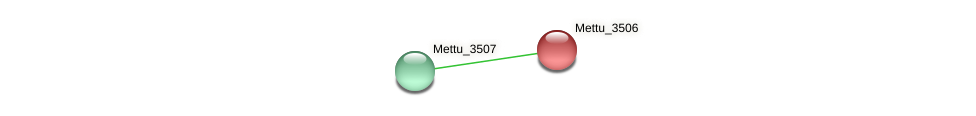 Mettu_3506 protein (Methylobacter tundripaludum) - STRING interaction network
