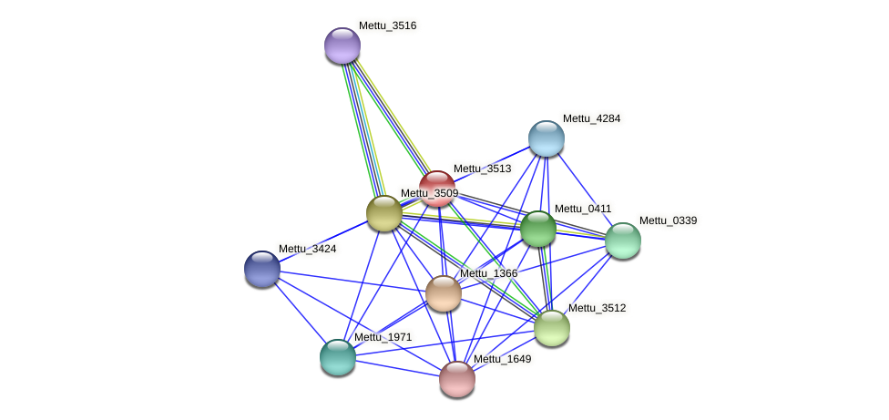 Mettu_3513 protein (Methylobacter tundripaludum) - STRING interaction network