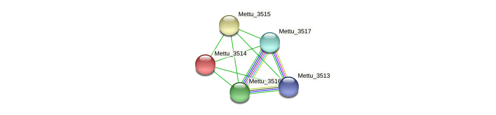 Mettu_3514 protein (Methylobacter tundripaludum) - STRING interaction network