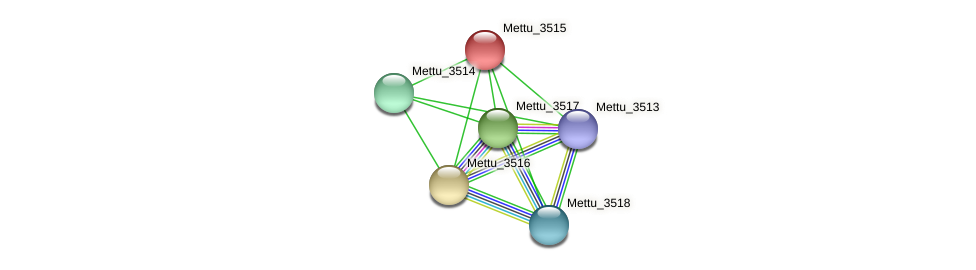 Mettu_3515 protein (Methylobacter tundripaludum) - STRING interaction network